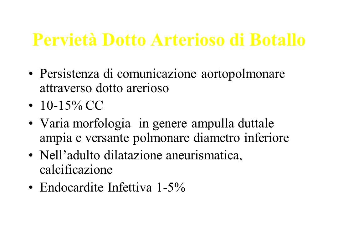 Pervietà Dotto Arterioso di Botallo