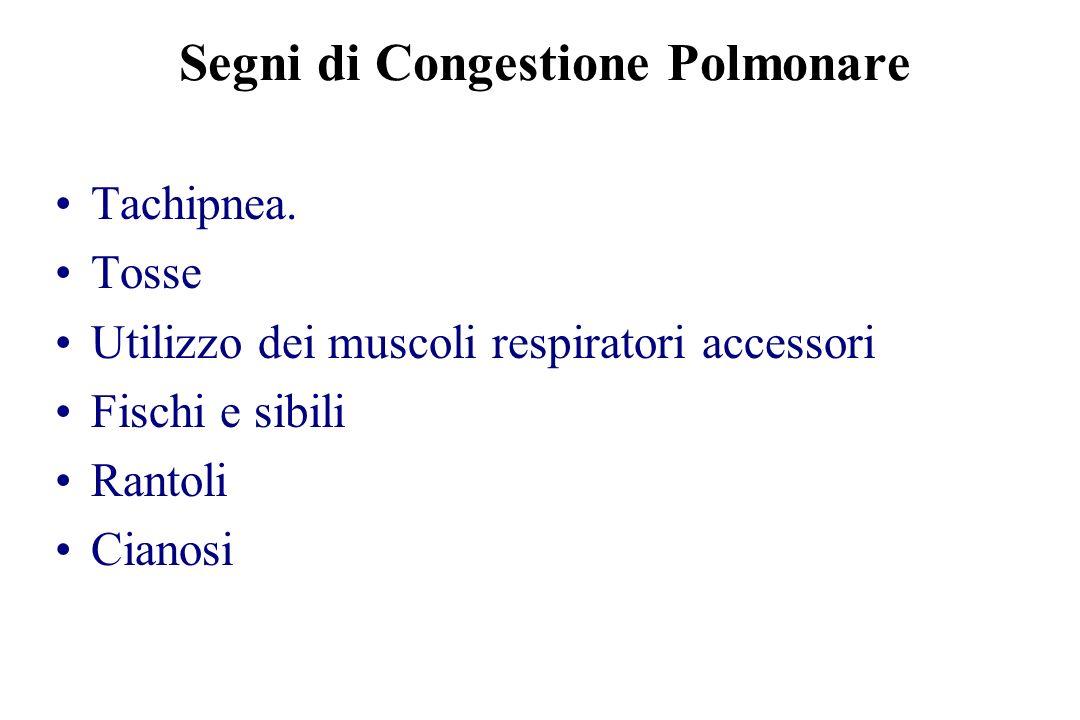 Segni di Congestione Polmonare