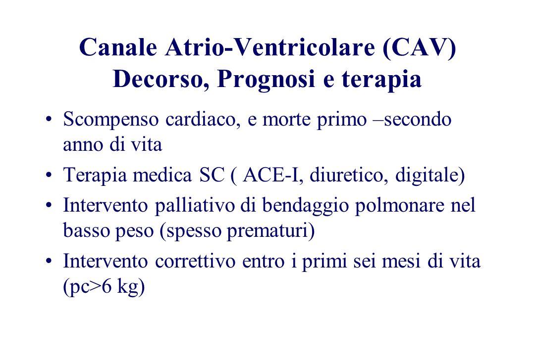 Canale Atrio-Ventricolare (CAV) Decorso, Prognosi e terapia