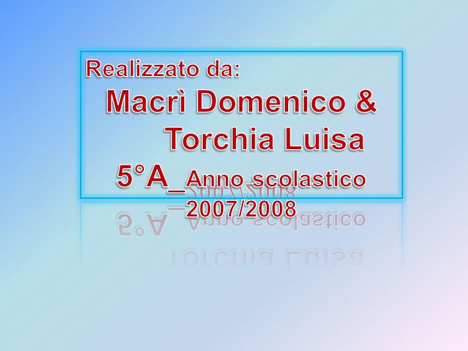 Macrì Domenico & Torchia Luisa 5°A_Anno scolastico 2007/2008