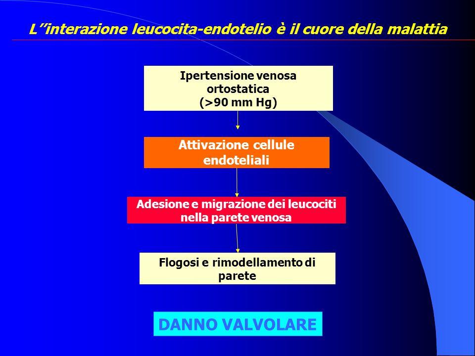 L''interazione leucocita-endotelio è il cuore della malattia