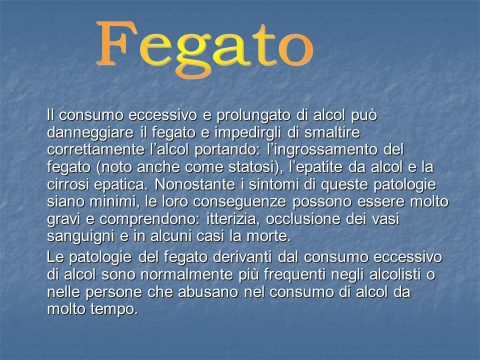 Fegato