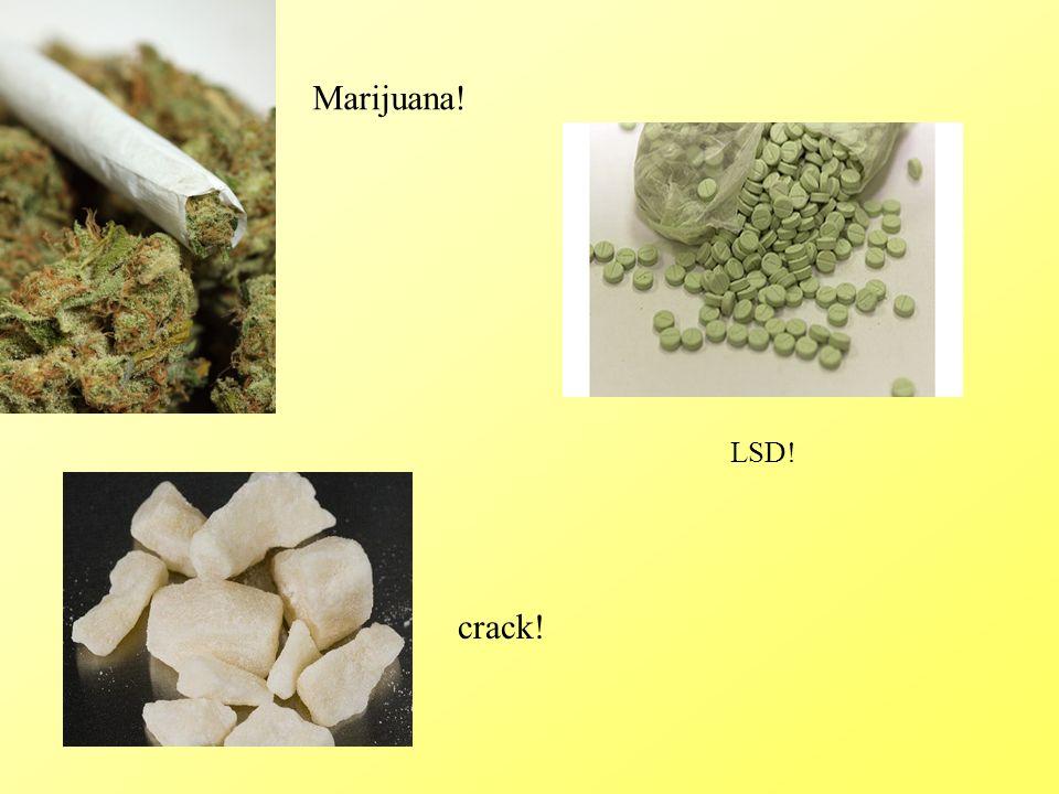 Marijuana! LSD! crack!