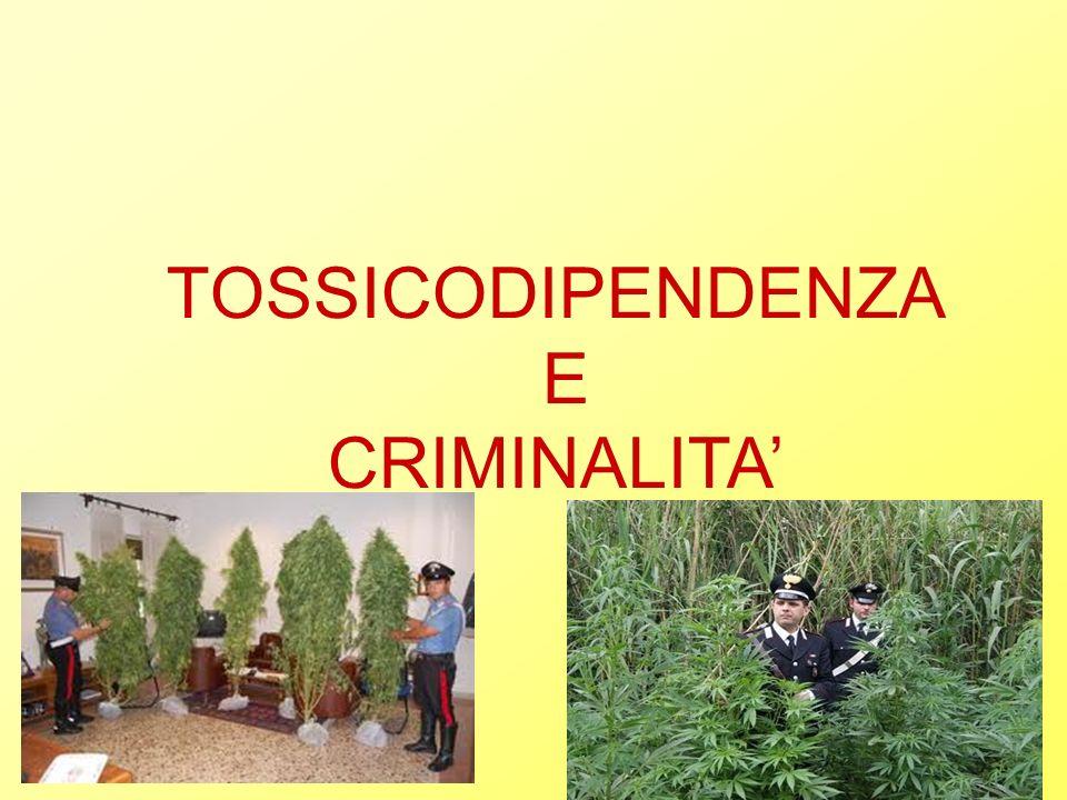 TOSSICODIPENDENZA E CRIMINALITA'