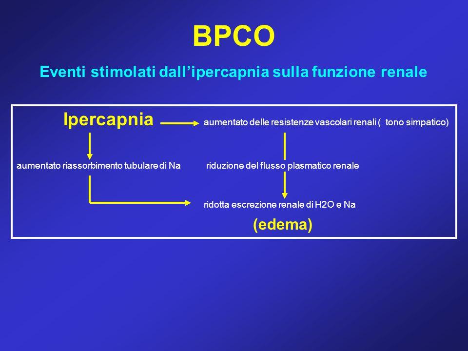 Eventi stimolati dall'ipercapnia sulla funzione renale