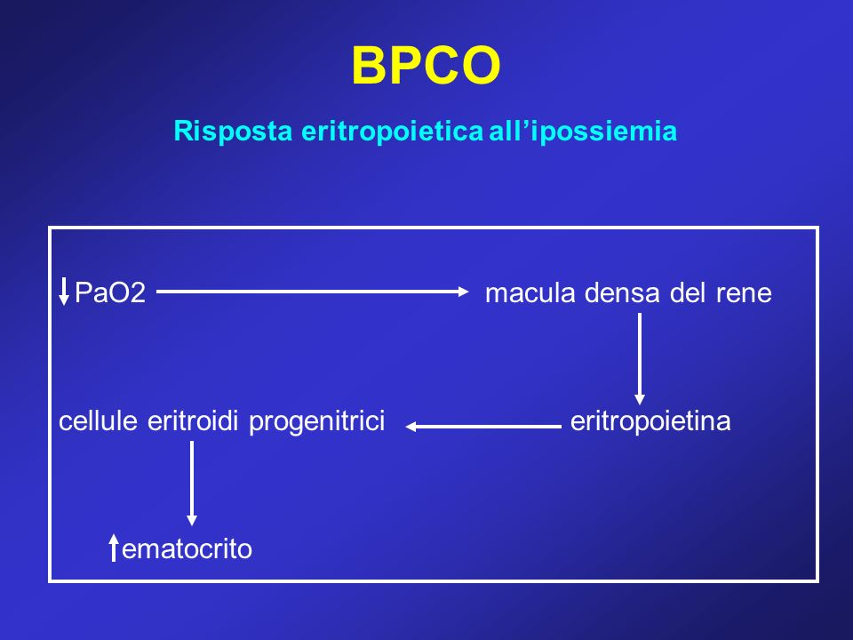 Risposta eritropoietica all'ipossiemia