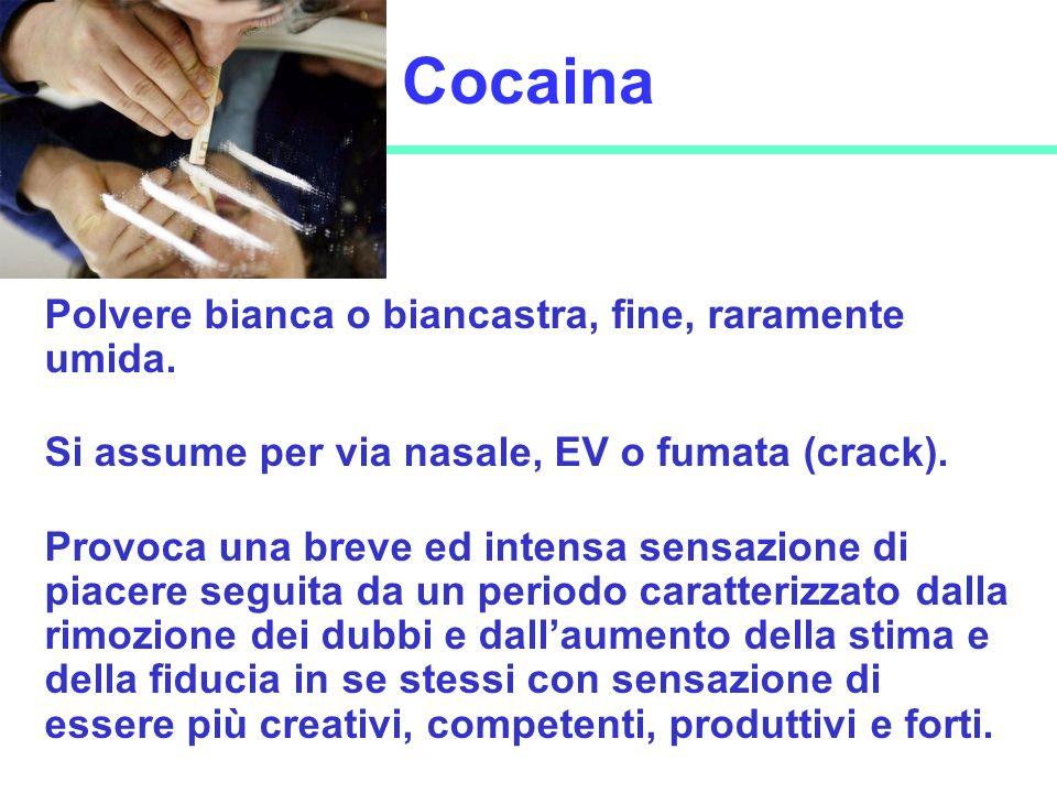 Cocaina Polvere bianca o biancastra, fine, raramente umida.