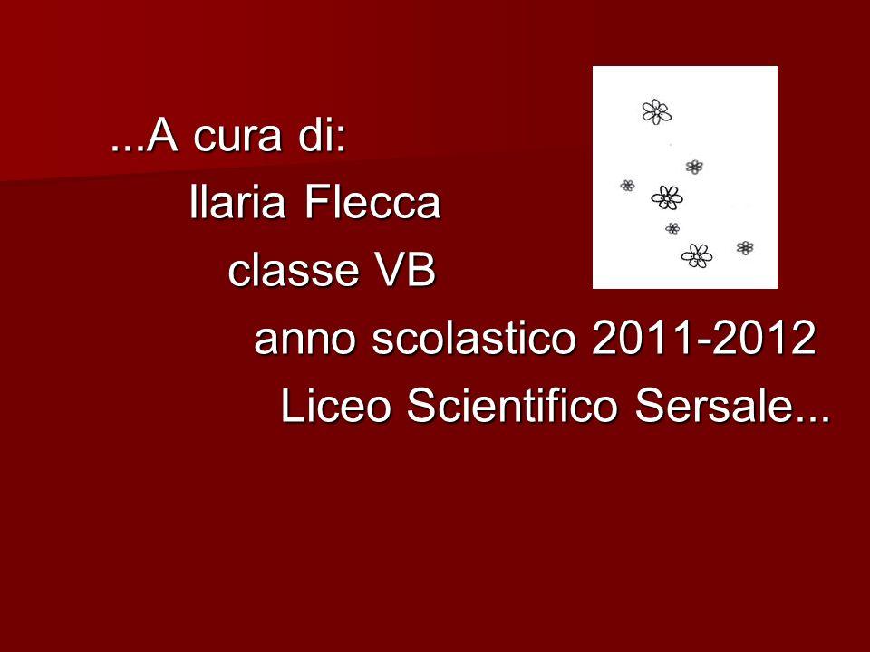 ...A cura di: Ilaria Flecca classe VB anno scolastico 2011-2012 Liceo Scientifico Sersale...