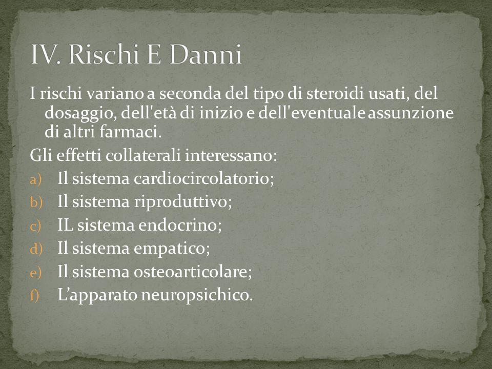 IV. Rischi E Danni