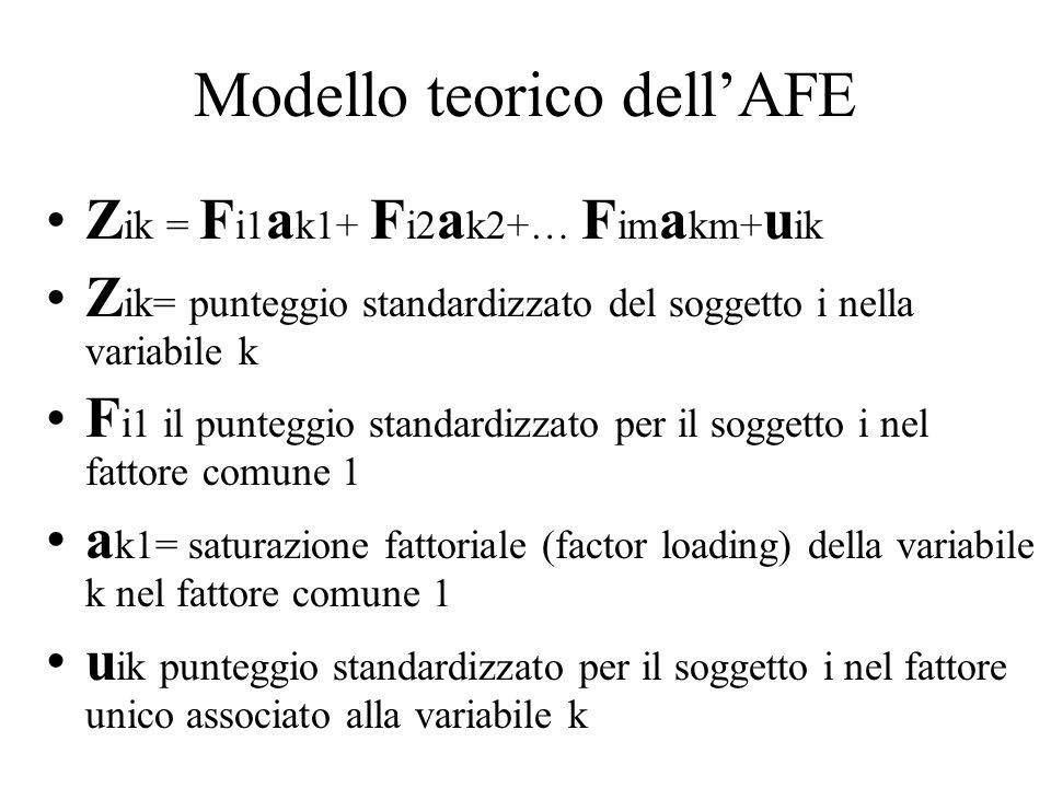 Modello teorico dell'AFE