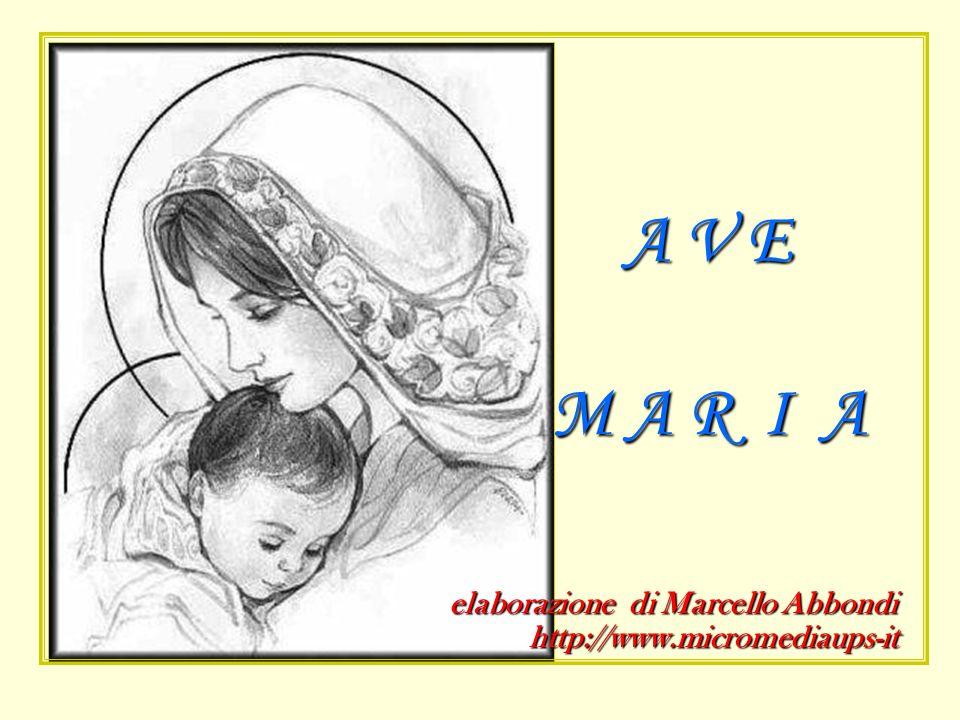 A V E M A R I A elaborazione di Marcello Abbondi