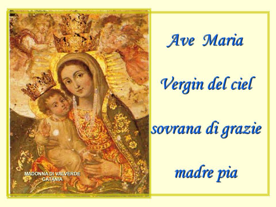 Ave Maria Vergin del ciel sovrana di grazie madre pia