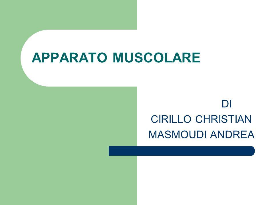 DI CIRILLO CHRISTIAN MASMOUDI ANDREA