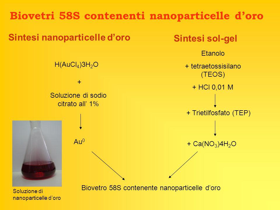 Biovetri 58S contenenti nanoparticelle d'oro