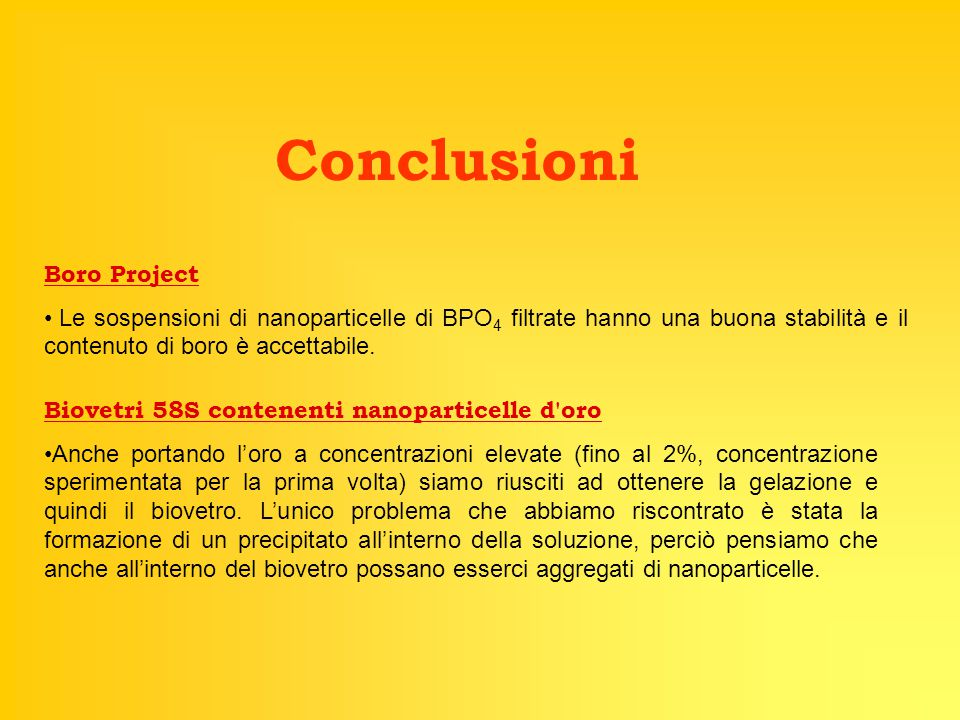 Conclusioni Boro Project