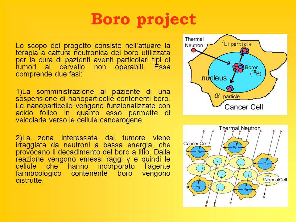 Boro project