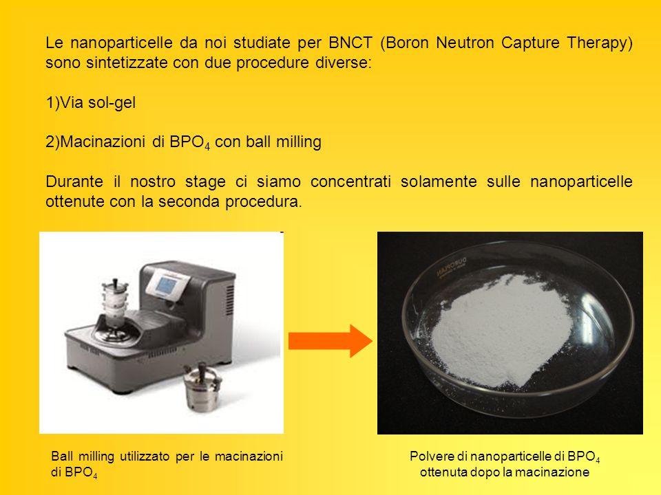 Polvere di nanoparticelle di BPO4 ottenuta dopo la macinazione