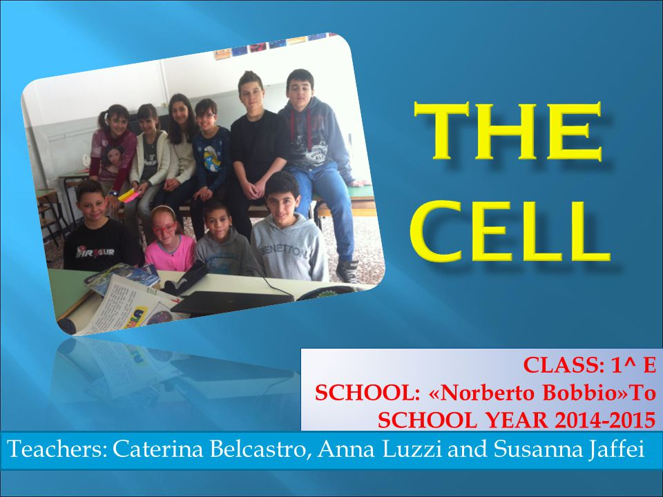 THE CELL Teachers: Caterina Belcastro, Anna Luzzi and Susanna Jaffei