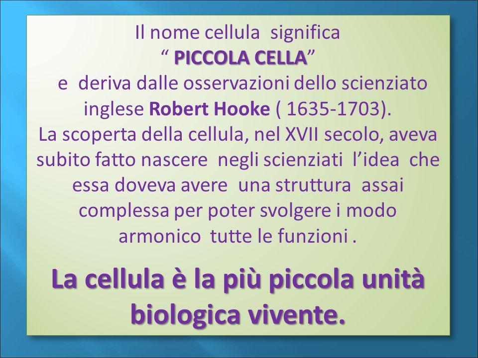 La cellula è la più piccola unità biologica vivente.