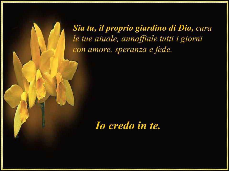 Sia tu, il proprio giardino di Dio, cura le tue aiuole, annaffiale tutti i giorni con amore, speranza e fede.