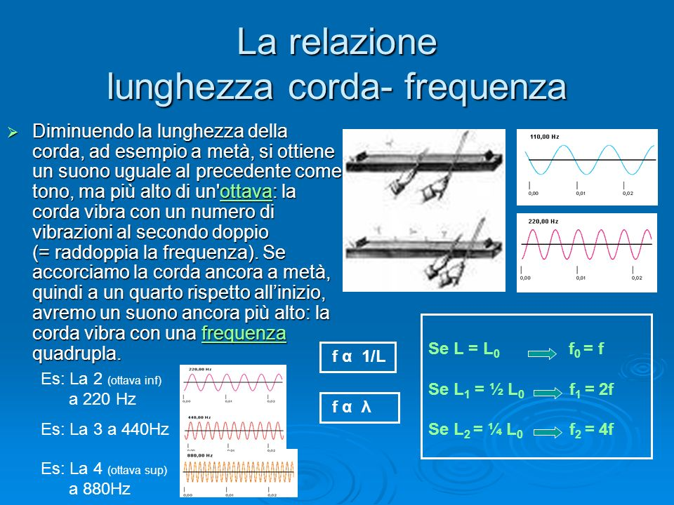 La relazione lunghezza corda- frequenza
