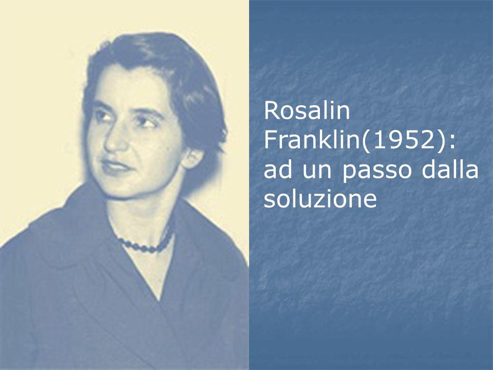 Rosalin Franklin(1952): ad un passo dalla soluzione