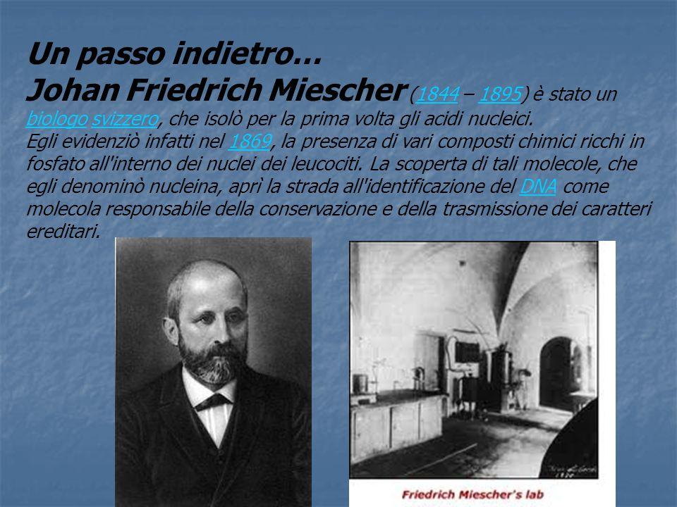 Un passo indietro…Johan Friedrich Miescher (1844 – 1895) è stato un biologo svizzero, che isolò per la prima volta gli acidi nucleici.