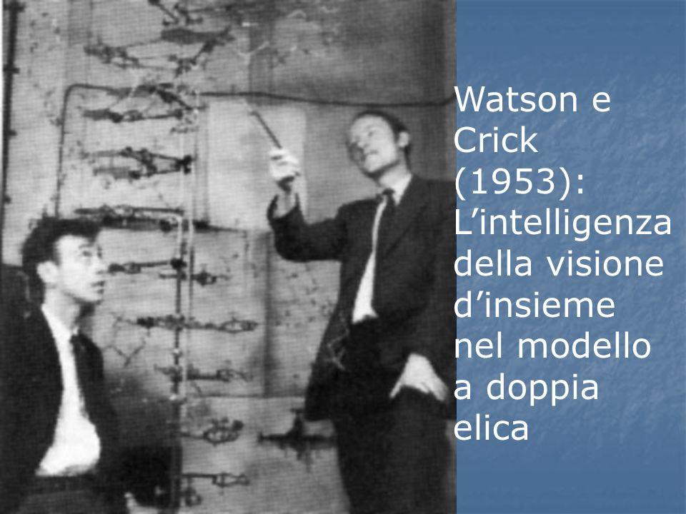 Watson e Crick (1953): L'intelligenza della visione d'insieme nel modello a doppia elica