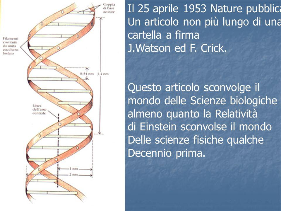 Il 25 aprile 1953 Nature pubblica