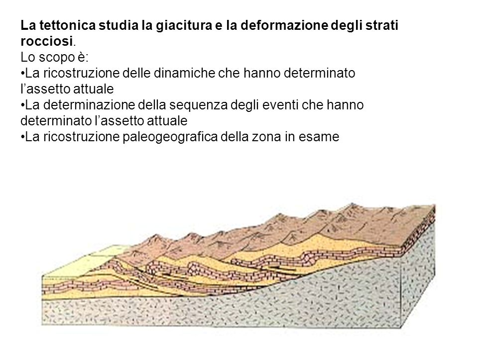 La tettonica studia la giacitura e la deformazione degli strati rocciosi.