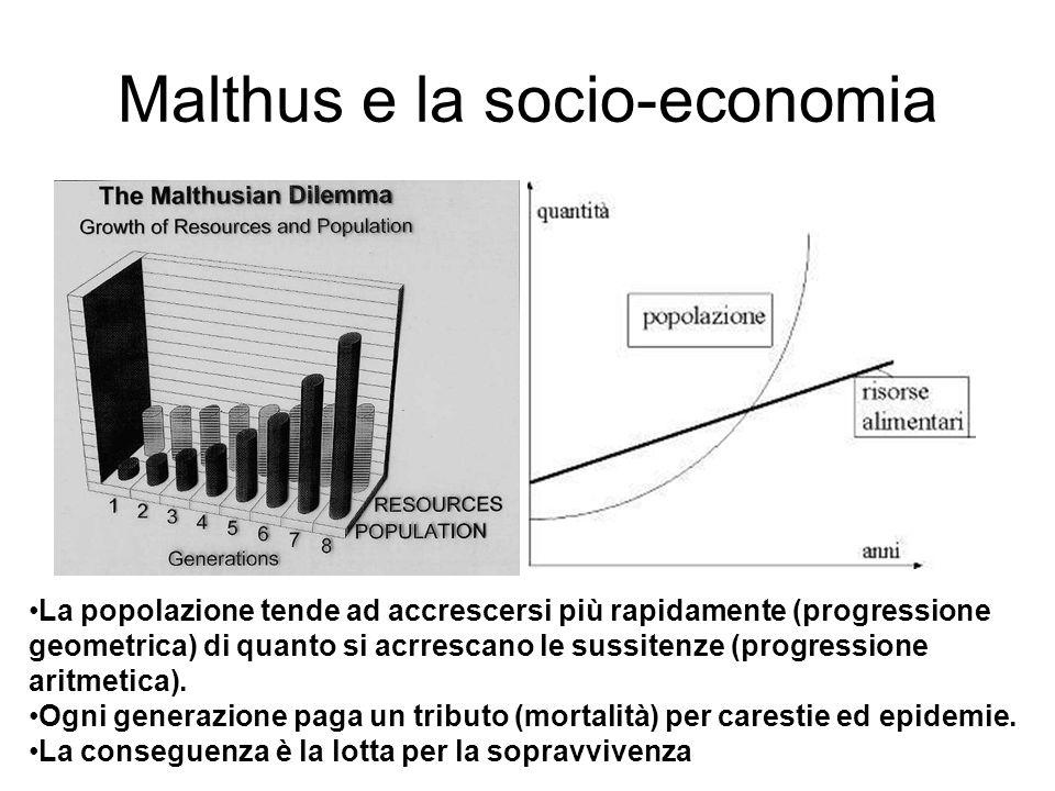 Malthus e la socio-economia