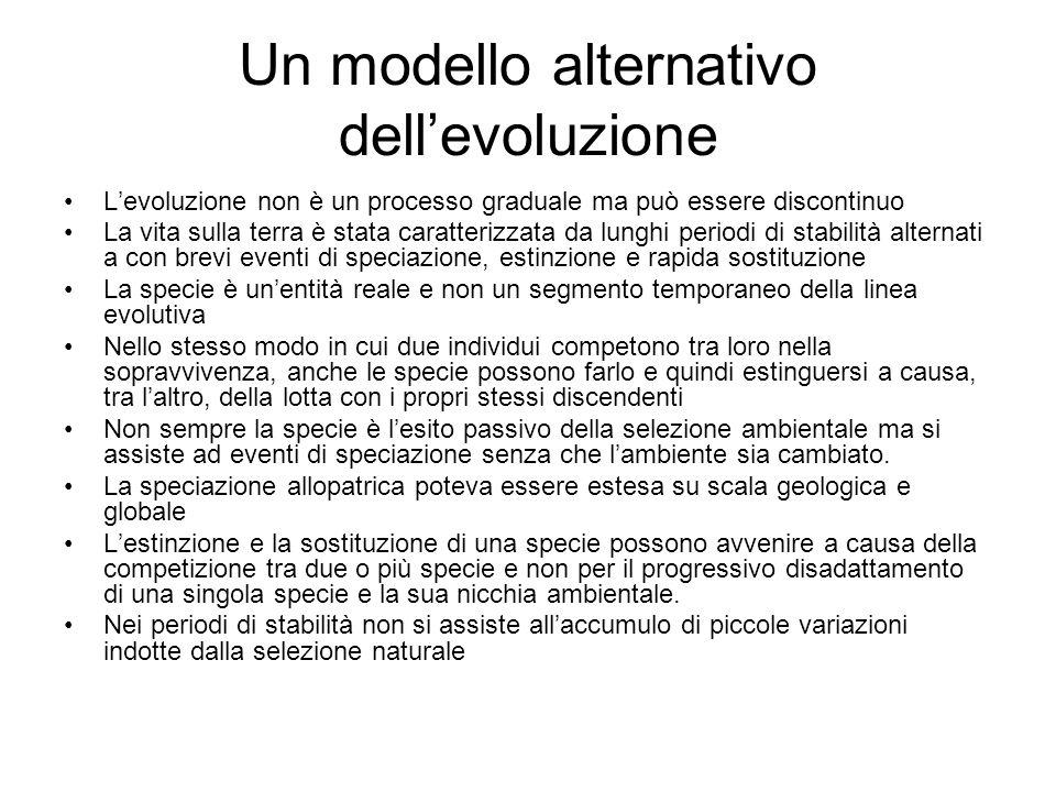 Un modello alternativo dell'evoluzione