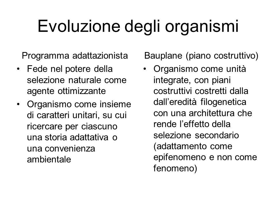 Evoluzione degli organismi