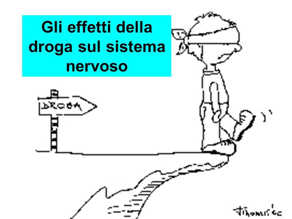 Gli effetti della droga sul sistema nervoso