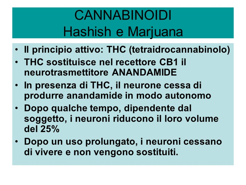 CANNABINOIDI Hashish e Marjuana