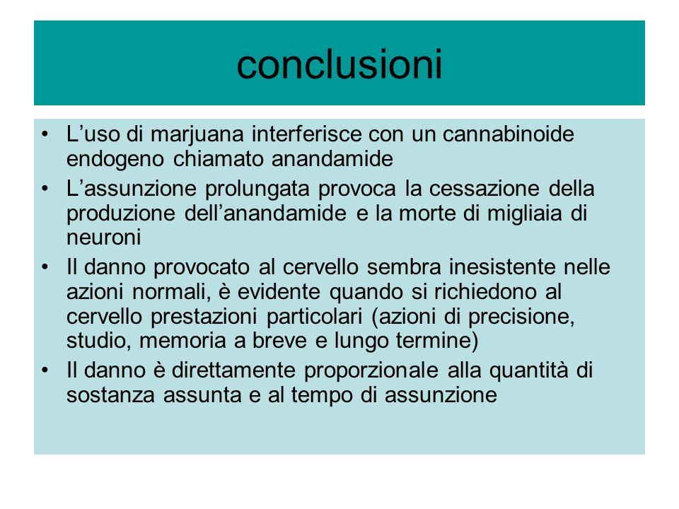 conclusioni L'uso di marjuana interferisce con un cannabinoide endogeno chiamato anandamide.