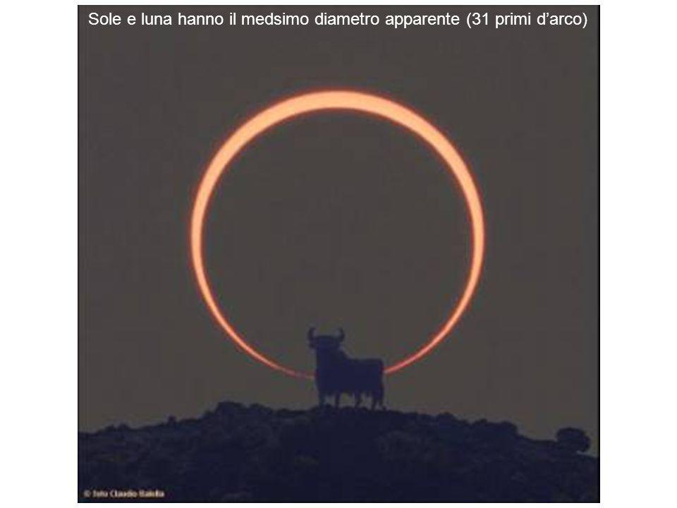 Sole e luna hanno il medsimo diametro apparente (31 primi d'arco)