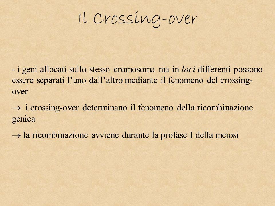 Il Crossing-over
