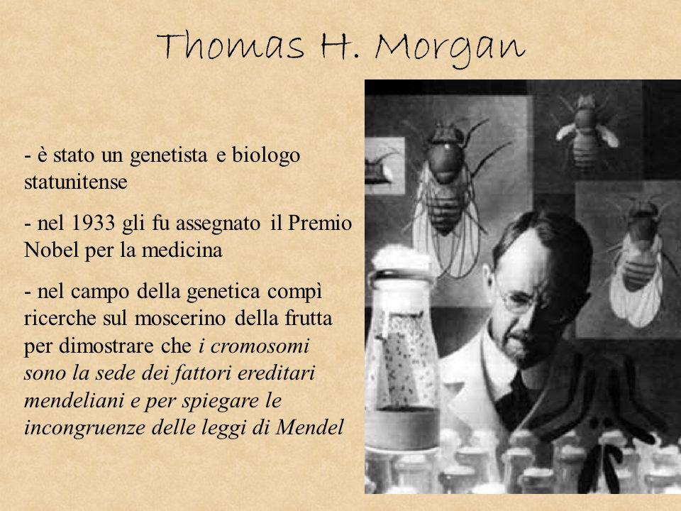 Thomas H. Morgan è stato un genetista e biologo statunitense