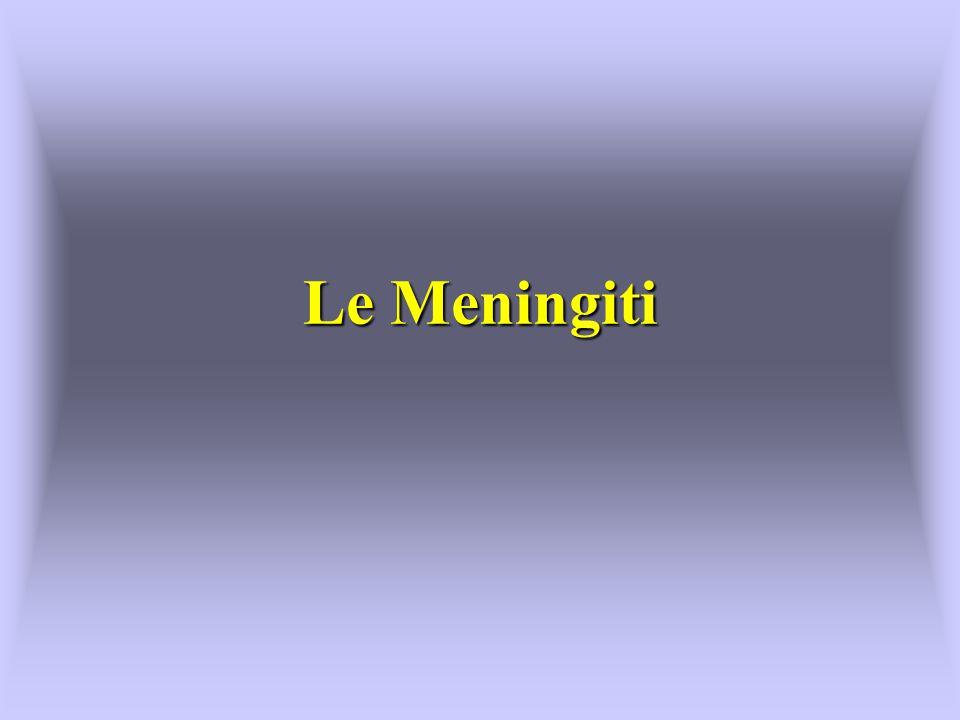 Le Meningiti