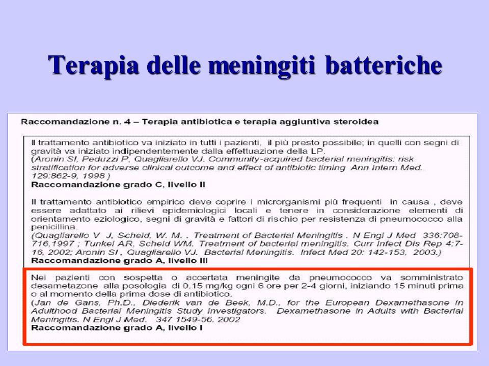 Terapia delle meningiti batteriche