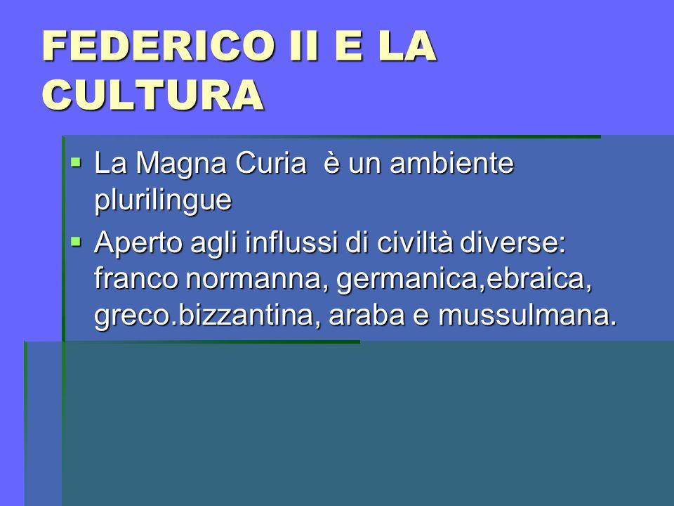 FEDERICO II E LA CULTURA
