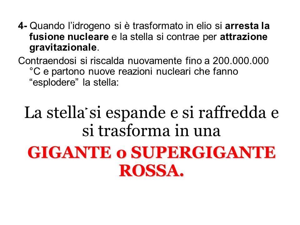 GIGANTE o SUPERGIGANTE ROSSA.