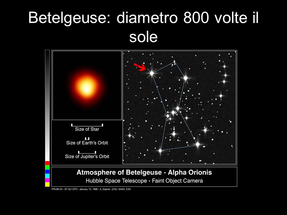 Betelgeuse: diametro 800 volte il sole