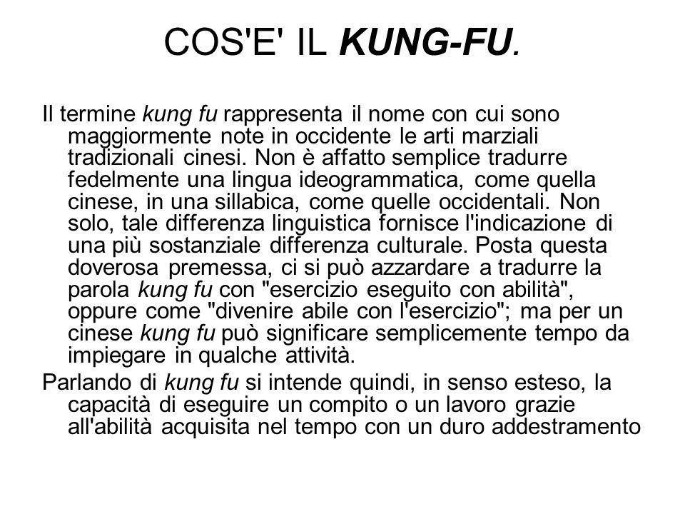 COS E IL KUNG-FU.
