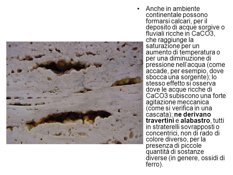 Anche in ambiente continentale possono formarsi calcari, per il deposito di acque sorgive o fluviali ricche in CaCO3, che raggiunge la saturazione per un aumento di temperatura o per una diminuzione di pressione nell'acqua (come accade, per esempio, dove sbocca una sorgente); lo stesso effetto si osserva dove le acque ricche di CaCO3 subiscono una forte agitazione meccanica (come si verifica in una cascata); ne derivano travertini e alabastro, tutti in straterelli sovrapposti o concentrici, non di rado di colore diverso, per la presenza di piccole quantità di sostanze diverse (in genere, ossidi di ferro).