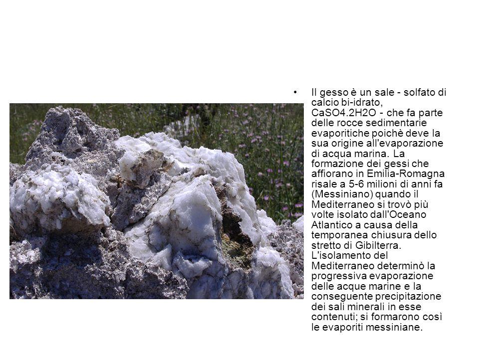 Il gesso è un sale - solfato di calcio bi-idrato, CaSO4
