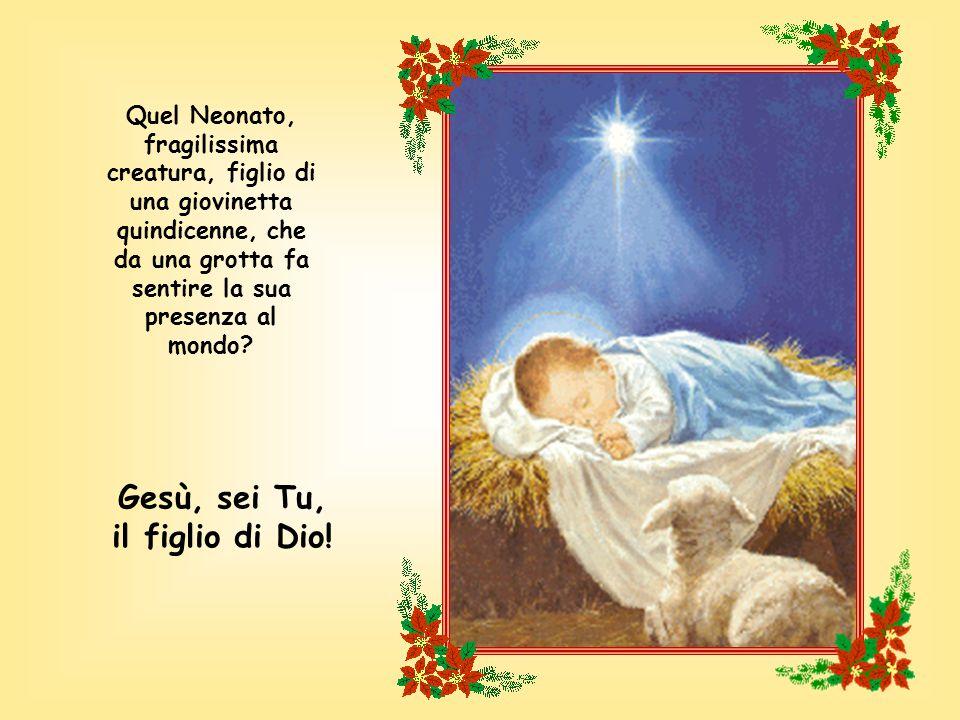 Gesù, sei Tu, il figlio di Dio!