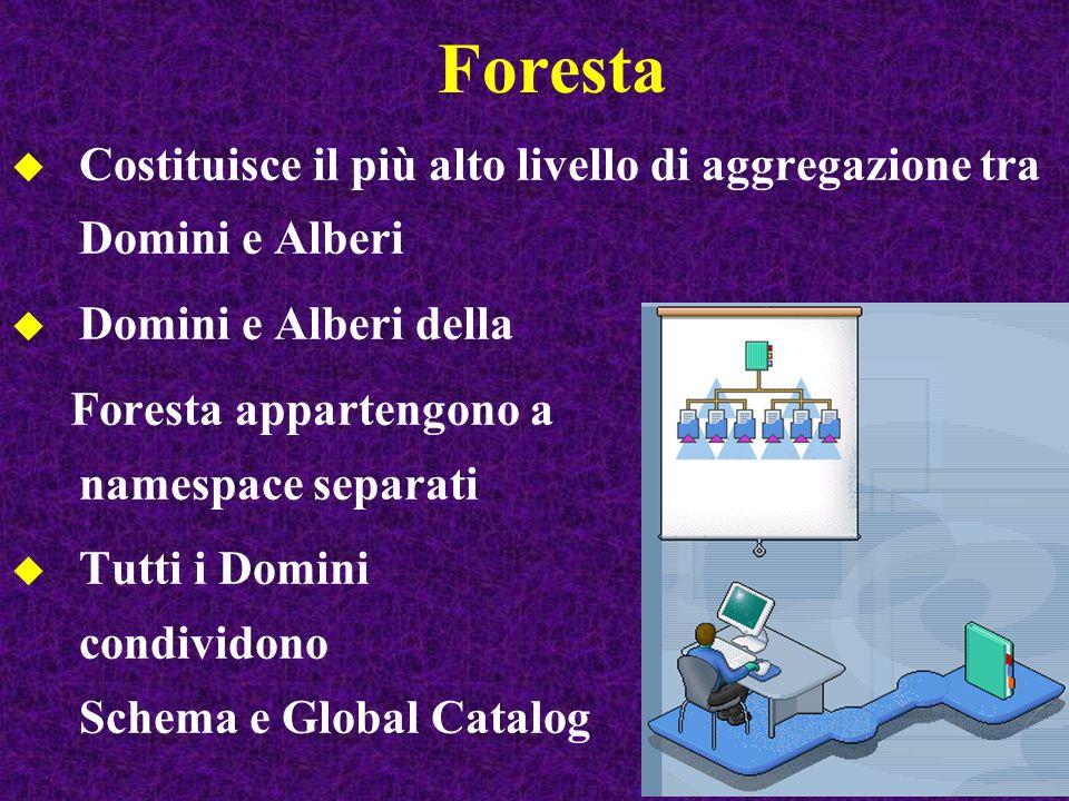 Foresta Costituisce il più alto livello di aggregazione tra Domini e Alberi. Domini e Alberi della.
