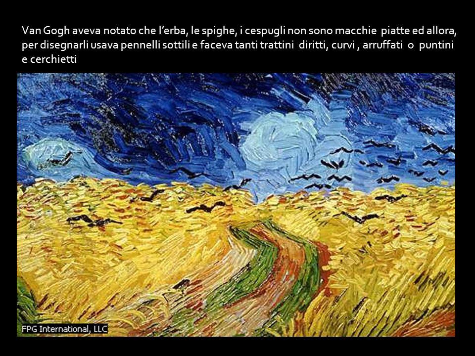 Van Gogh aveva notato che l'erba, le spighe, i cespugli non sono macchie piatte ed allora, per disegnarli usava pennelli sottili e faceva tanti trattini diritti, curvi , arruffati o puntini e cerchietti